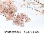 Bouquet Of Sakura Flower With...
