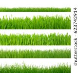 green grass isolated on white... | Shutterstock . vector #623742914