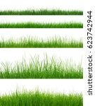 green grass on white background  | Shutterstock . vector #623742944