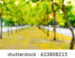 garden leaf yellow on... | Shutterstock . vector #623808215