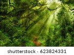 Deep Tropical Jungles Of  Asia...
