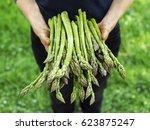 Asparagus. Fresh Asparagus....