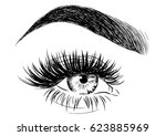 beautiful female eyebrow and... | Shutterstock .eps vector #623885969