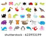 zoo pet wild animal set cute... | Shutterstock .eps vector #623953199