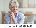 portrait of blond senior woman... | Shutterstock . vector #623984651