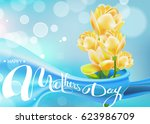 happy mothers day. lettering. ...   Shutterstock .eps vector #623986709