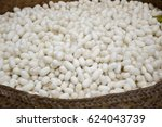 white cocoons of the silkworm... | Shutterstock . vector #624043739