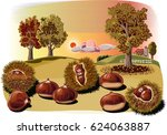 some urchins of chestnuts in a... | Shutterstock .eps vector #624063887