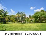 tropical botanical garden in... | Shutterstock . vector #624083075