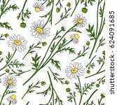 chamomile wild field flower... | Shutterstock .eps vector #624091685
