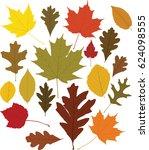 leaves  vector    Shutterstock .eps vector #624098555