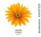 hand drawn vector realistic... | Shutterstock .eps vector #624197315
