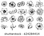 flower set | Shutterstock .eps vector #624284414