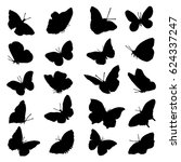 A Large Set Of Butterfly...