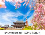 Blooming Sakura Flower Cherry...