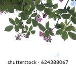 spring pink flower | Shutterstock . vector #624388067