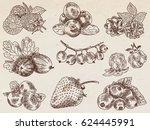 berries garden  blackberries ...   Shutterstock .eps vector #624445991