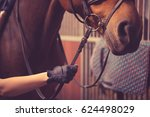 female rider with white gloves... | Shutterstock . vector #624498029