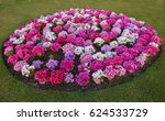 Nice Circle Of Flower Bed