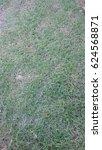 grass background | Shutterstock . vector #624568871