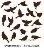 set of decorative bird... | Shutterstock .eps vector #624608825