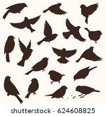 Set Of Decorative Bird...
