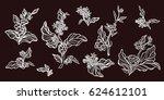 set of vintage retro handmade... | Shutterstock .eps vector #624612101