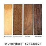 boxwood carribean  koa hawaii ...   Shutterstock . vector #624630824