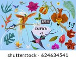 bright tropican birds and... | Shutterstock .eps vector #624634541
