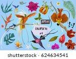 Bright Tropican Birds And...