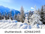 Winter Snow Mountain Trees