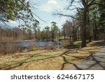 pine park with a pond. park... | Shutterstock . vector #624667175