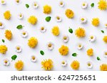 Daisy And Dandelion Pattern....