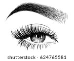 woman eye with perfectly shaped ... | Shutterstock .eps vector #624765581