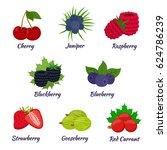 cartoon berries menu. raspberry ... | Shutterstock .eps vector #624786239