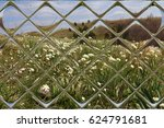 mountain flowers through window ... | Shutterstock . vector #624791681
