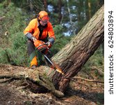 the lumberjack working in a... | Shutterstock . vector #624803894