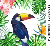 Toucan And Frame From Tropical...