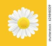 chamomile realistic symbol.... | Shutterstock .eps vector #624848309