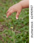 baby hand to take flower | Shutterstock . vector #62490907