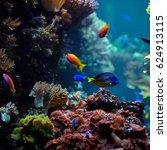 underwater background.... | Shutterstock . vector #624913115