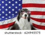 beautiful border collie in...   Shutterstock . vector #624945575