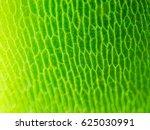 abstract blur close up shot of...   Shutterstock . vector #625030991