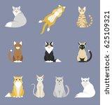 different cartoon cats set.... | Shutterstock .eps vector #625109321