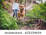 Stock photo small yellow dog on a forest trail with a people walking in the background 625154654