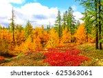autumn tundra landscape. autumn ... | Shutterstock . vector #625363061