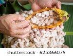 opened raw fresh cocoa pod in... | Shutterstock . vector #625366079