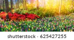 Stock photo panoramic landscape with multicolor spring flowers in park nature background 625427255