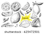 vector hand drawn lime or lemon ... | Shutterstock .eps vector #625472501