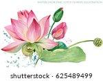 pink lotus. watercolor... | Shutterstock . vector #625489499